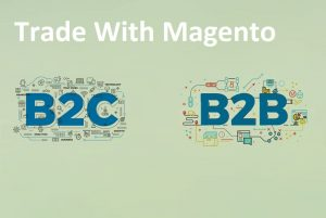 B2C and B2B Trade With Magento